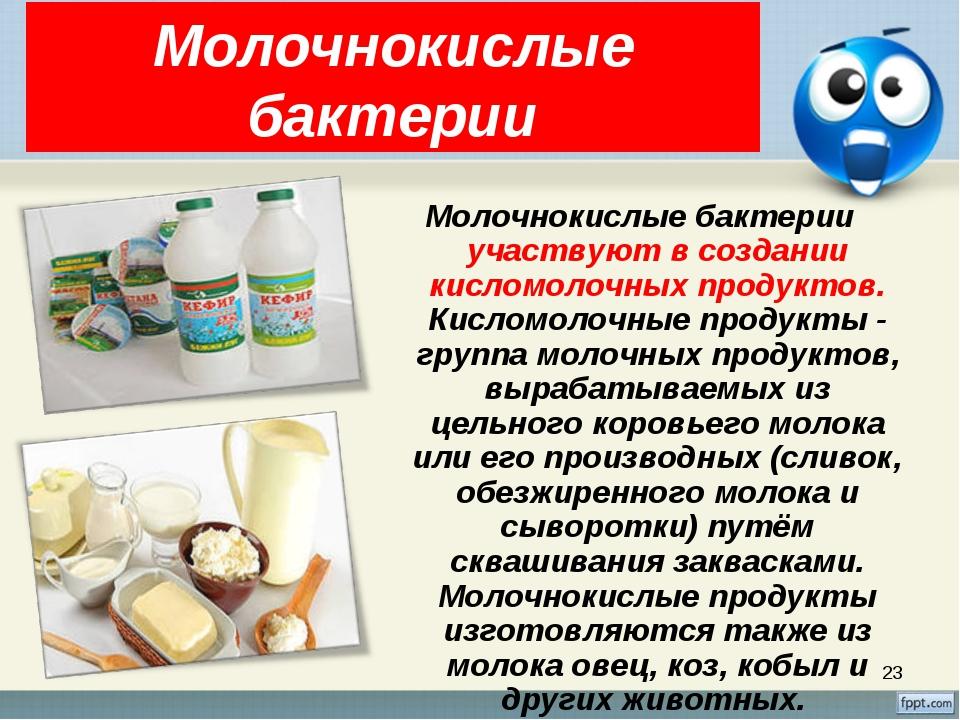 * Молочнокислые бактерии Молочнокислые бактерии участвуют в создании кисломол...