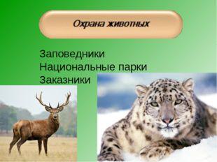 Заповедники Национальные парки Заказники