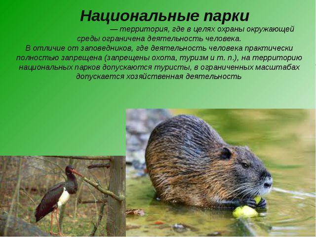 Национальные парки Национа́льный парк— территория, где в целях охраны окружа...