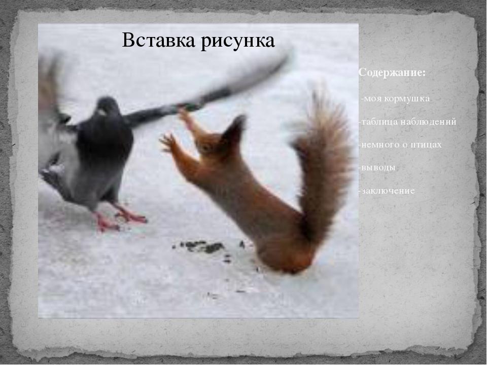 Содержание: -моя кормушка -таблица наблюдений -немного о птицах -выводы -закл...