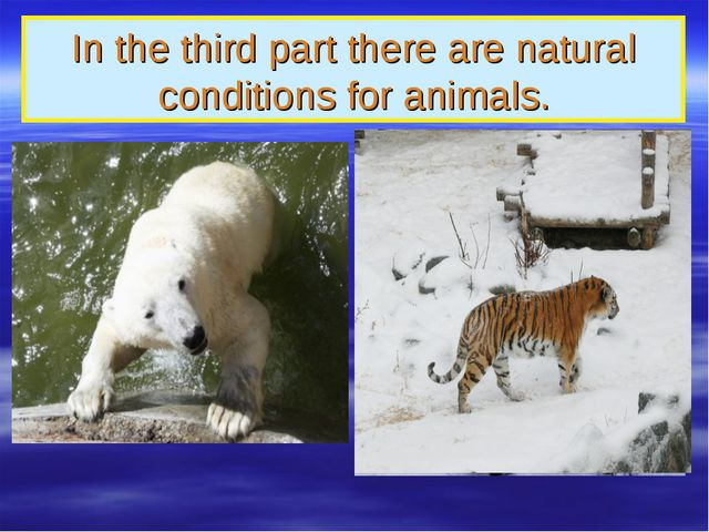 In the third part there are natural conditions for animals.