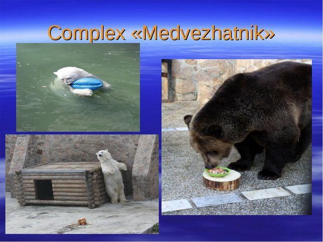 Complex «Medvezhatnik»