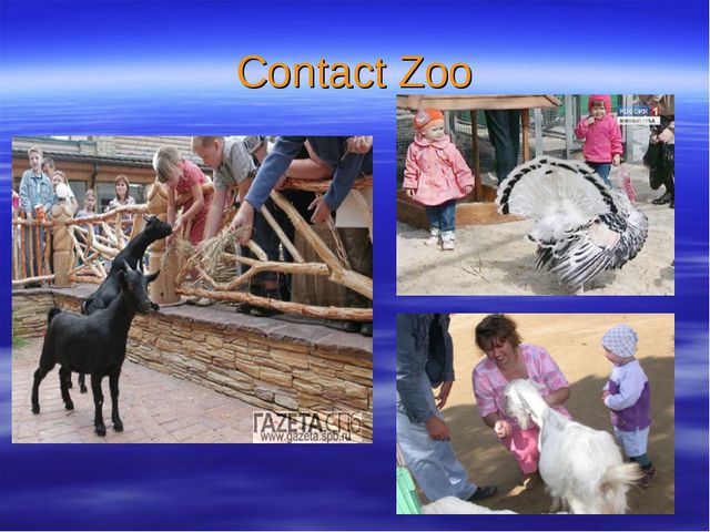 Contact Zoo