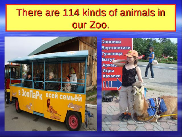 There are 114 kinds of animals in our Zoo.