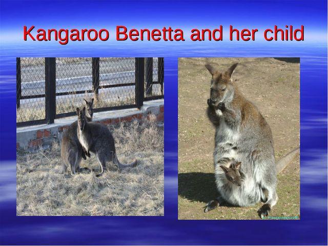 Kangaroo Benetta and her child