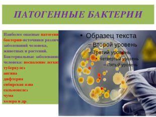 ПАТОГЕННЫЕ БАКТЕРИИ Наиболее опасные патогенные бактерии-источники различных