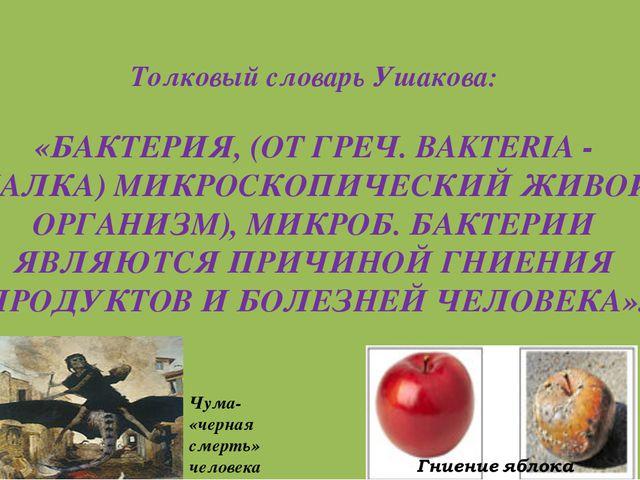 Толковый словарь Ушакова: «БАКТЕРИЯ, (ОТ ГРЕЧ. BAKTERIA - ПАЛКА) МИКРОСКОПИЧЕ...