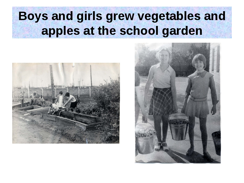 Boys and girls grew vegetables and apples at the school garden