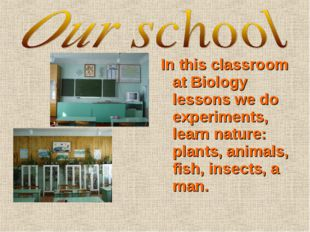 In this classroom at Biology lessons we do experiments, learn nature: plants,