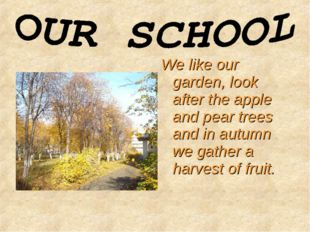 We like our garden, look after the apple and pear trees and in autumn we gath
