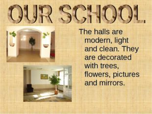 The halls are modern, light and clean. They are decorated with trees, flowers