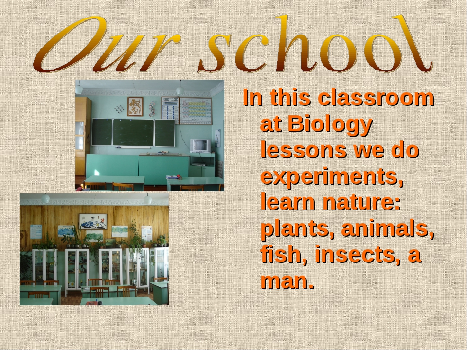 In this classroom at Biology lessons we do experiments, learn nature: plants,...