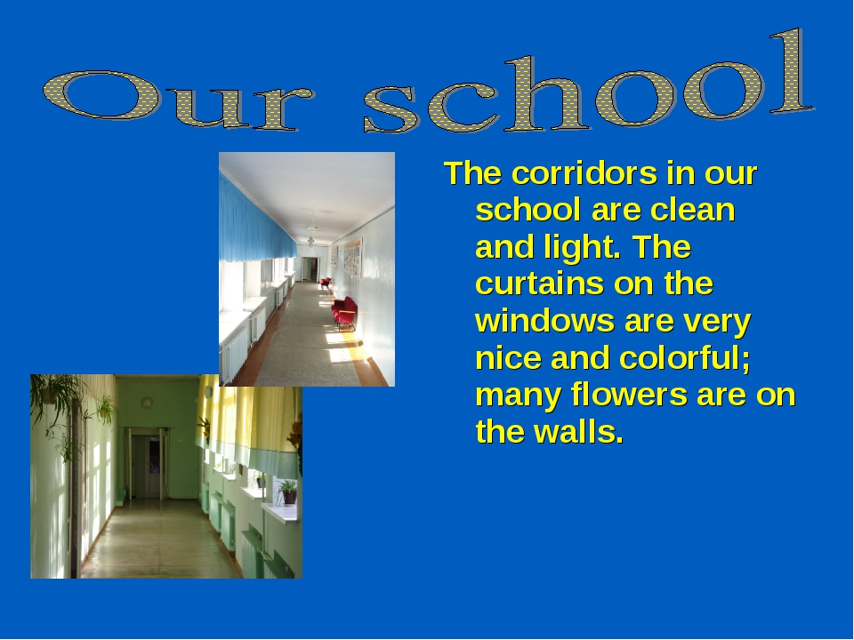 The corridors in our school are clean and light. The curtains on the windows...