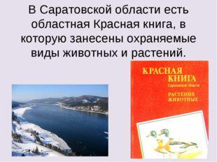 В Саратовской области есть областная Красная книга, в которую занесены охраня