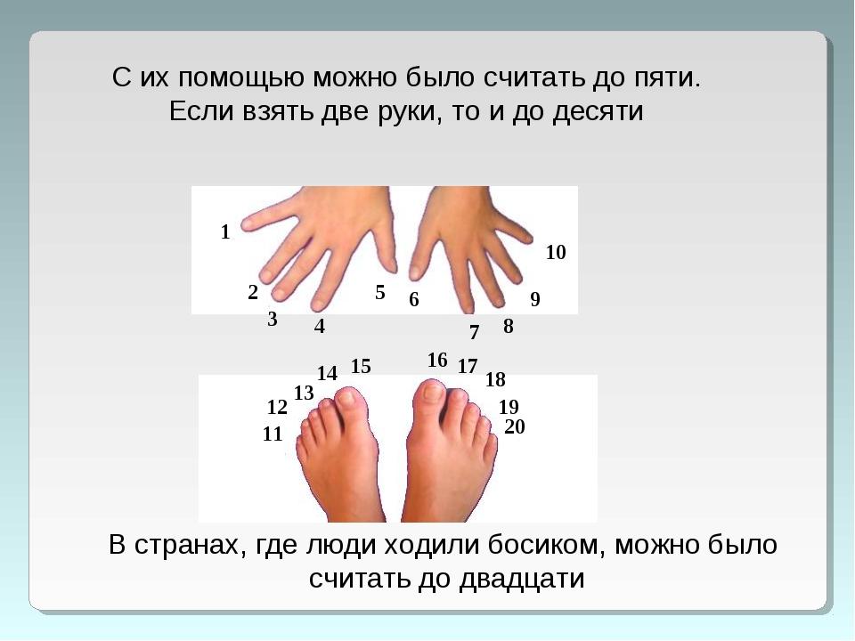 С их помощью можно было считать до пяти. Если взять две руки, то и до десяти...