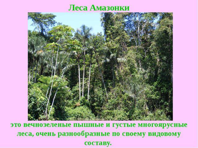 Реферат сертификация леса метрология стандартизация сертификация программного обеспечения
