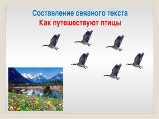 Составление связного текста Как путешествуют птицы