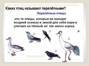 Каких птиц называют перелётными?