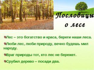 Пословицы о лесе Лес – это богатство и краса, береги наши леса. Люби лес, люб