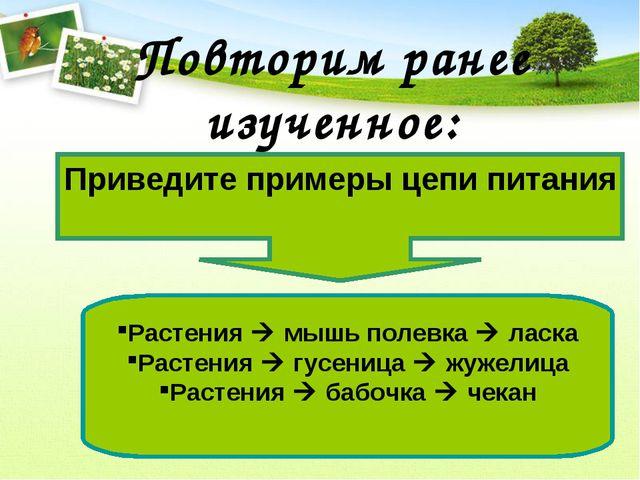 Повторим ранее изученное: Приведите примеры цепи питания Растения  мышь поле...