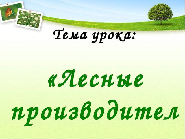 Тема урока: «Лесные производители»