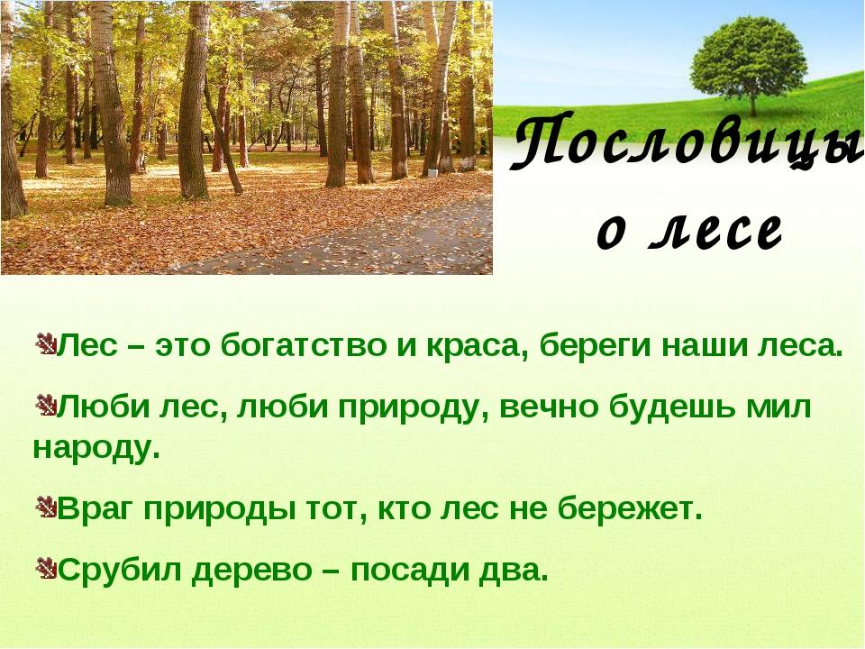 Пословицы о лесе Лес – это богатство и краса, береги наши леса. Люби лес, люб...