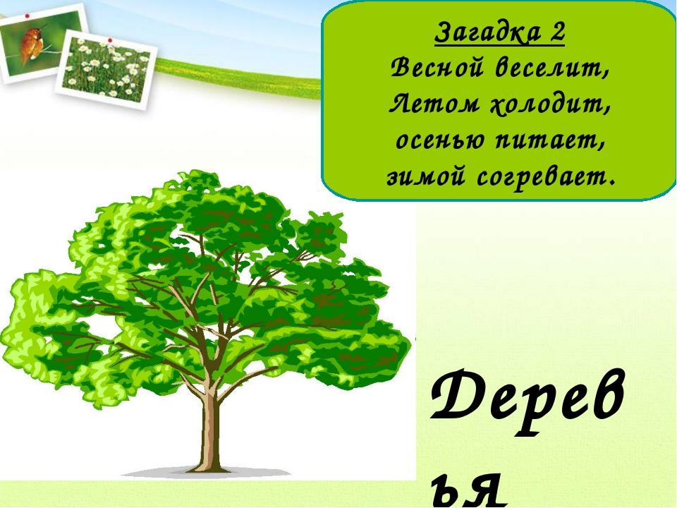 Загадка 2 Весной веселит, Летом холодит, осенью питает, зимой согревает.