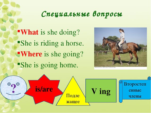 Специальные вопросы What is she doing? She is riding a horse. Where is she go...