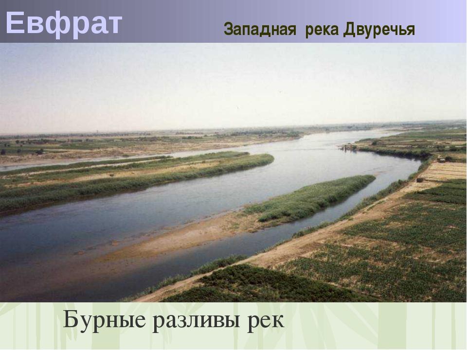 Евфрат Западная река Двуречья Бурные разливы рек