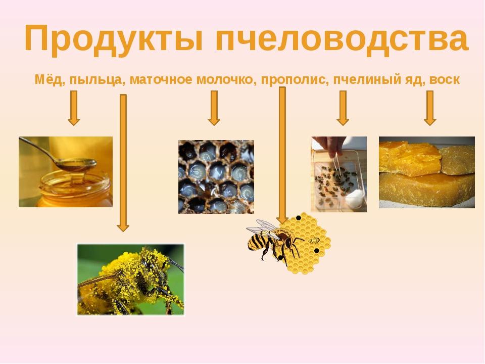 Продукты пчеловодства Мёд, пыльца, маточное молочко, прополис, пчелиный яд, в...