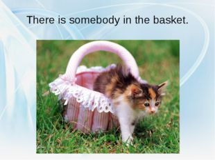 There is somebody in the basket.