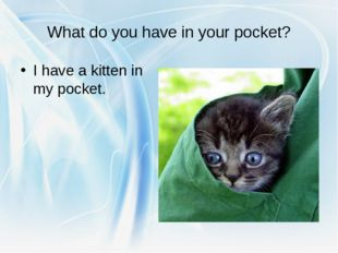 What do you have in your pocket? I have a kitten in my pocket.