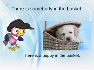 There is somebody in the basket. There is a puppy in the basket.