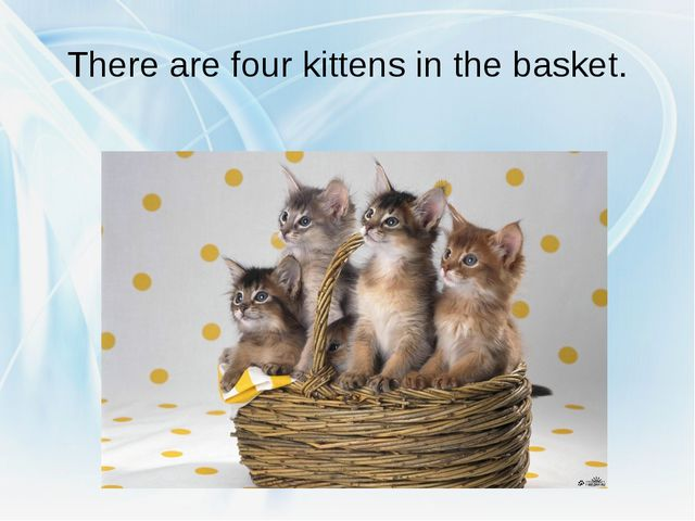 There are four kittens in the basket.