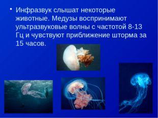 Инфразвук слышат некоторые животные. Медузы воспринимают ультразвуковые волны