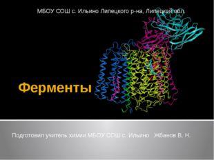 Ферменты Подготовил учитель химии МБОУ СОШ с. Ильино Жбанов В. Н. МБОУ СОШ с.
