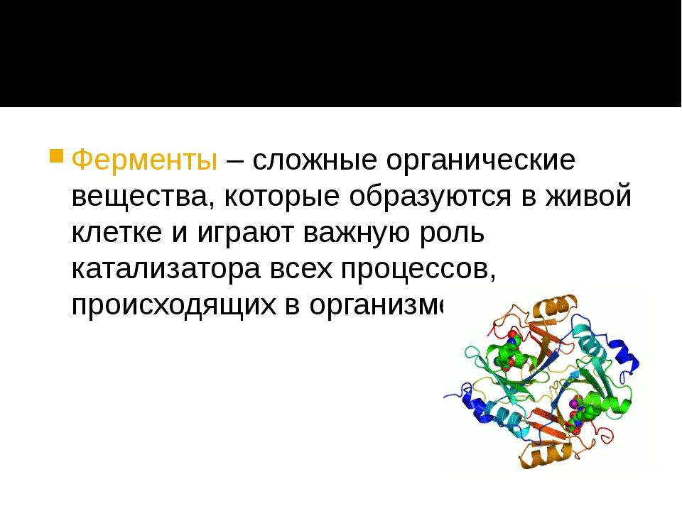 Ферменты – сложные органические вещества, которые образуются в живой клетке...