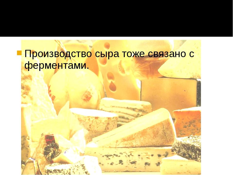 Производство сыра тоже связано с ферментами.