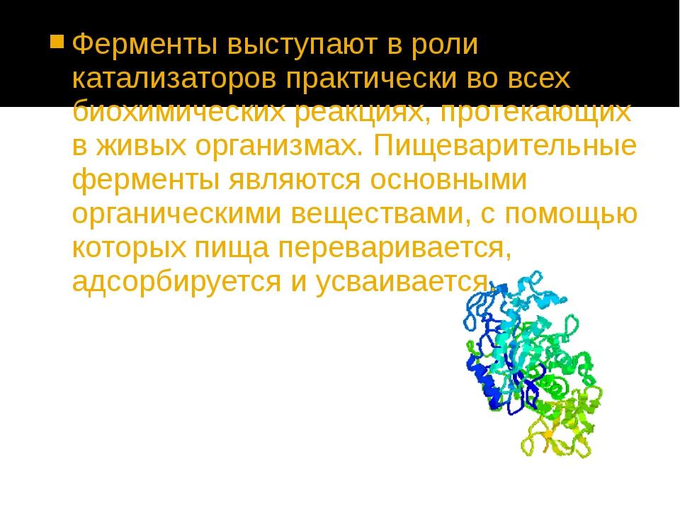 Ферменты выступают в роли катализаторов практически во всех биохимических реа...