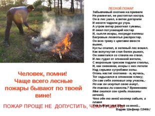 Человек, помни! Чаще всего лесные пожары бывают по твоей вине! ПОЖАР ПРОЩЕ НЕ