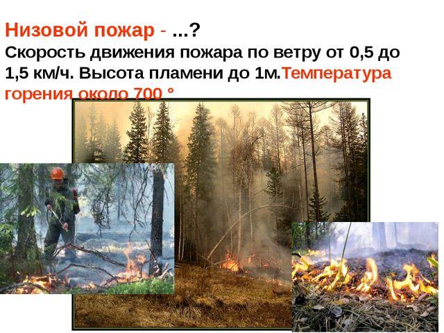 Низовой пожар - ...? Скорость движения пожара по ветру от 0,5 до 1,5 км/ч. Вы...