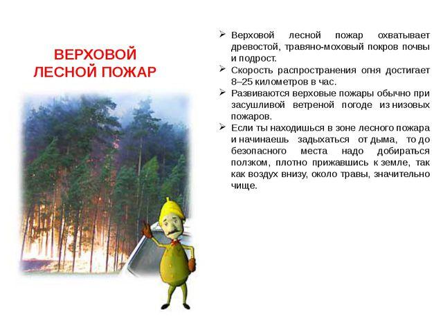 ВЕРХОВОЙ ЛЕСНОЙ ПОЖАР Верховой лесной пожар охватывает древостой, травяно-мох...