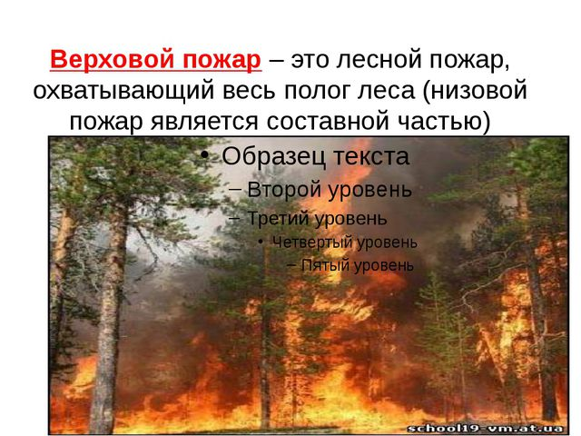 Верховой пожар – это лесной пожар, охватывающий весь полог леса (низовой пожа...