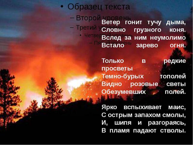 Ветер гонит тучу дыма, Словно грузного коня. Вслед за ним неумолимо Встало з...