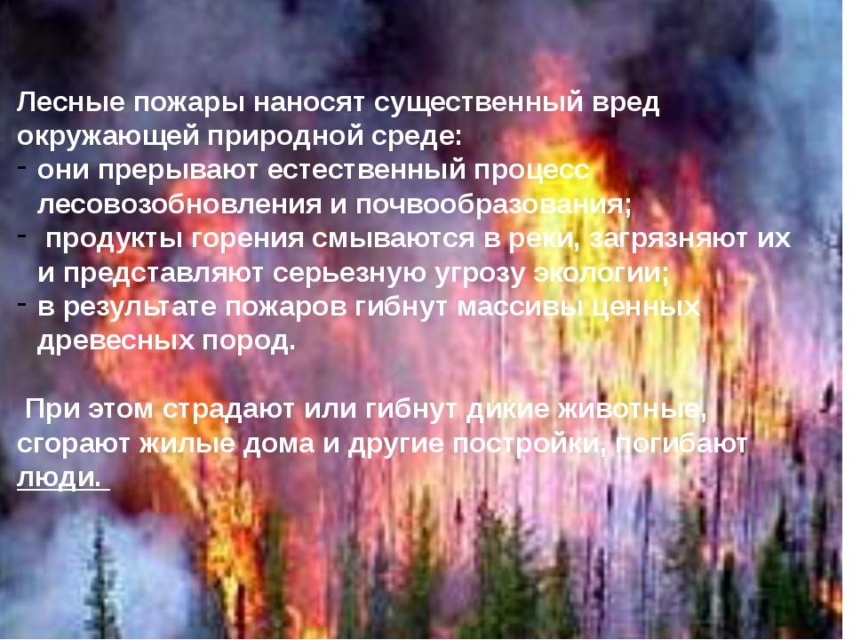Лесные пожары наносят существенный вред окружающей природной среде: они прер...