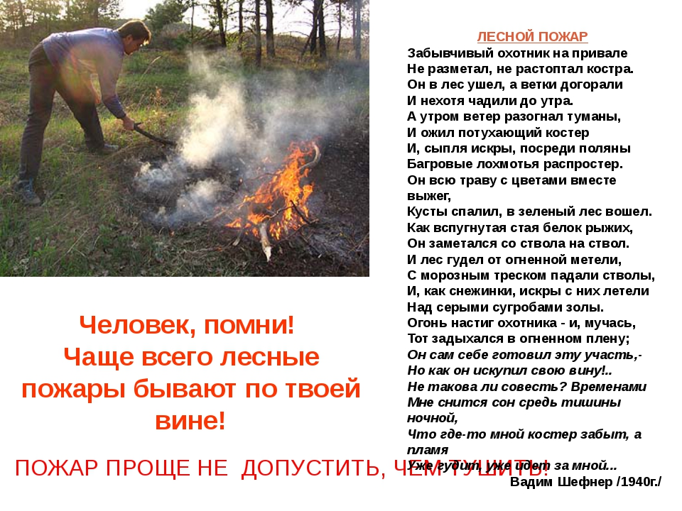 Человек, помни! Чаще всего лесные пожары бывают по твоей вине! ПОЖАР ПРОЩЕ НЕ...