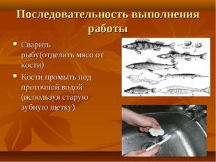 Последовательность выполнения работы Сварить рыбу(отделить мясо от кости) Кос