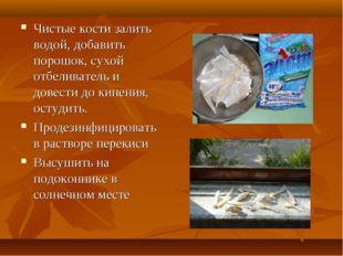 Чистые кости залить водой, добавить порошок, сухой отбеливатель и довести до