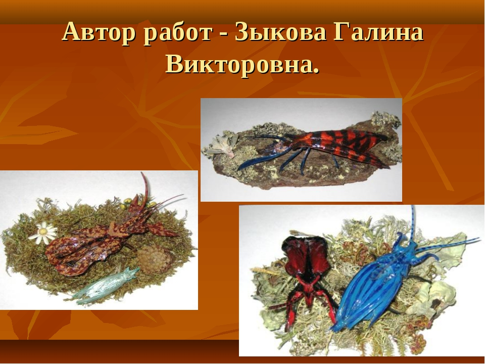 Автор работ - Зыкова Галина Викторовна.