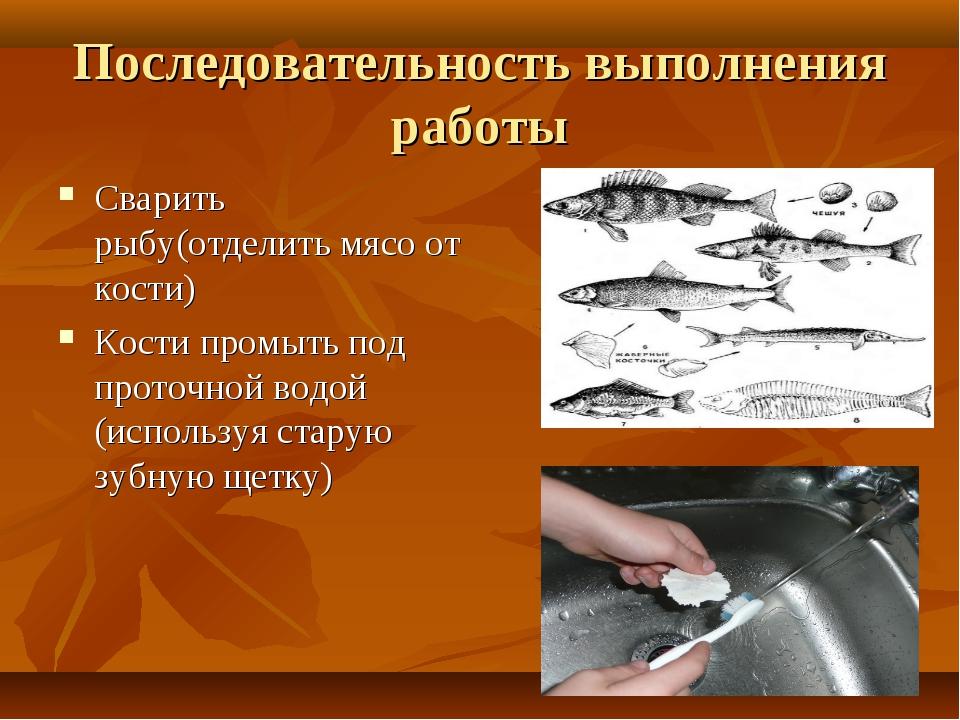 Последовательность выполнения работы Сварить рыбу(отделить мясо от кости) Кос...